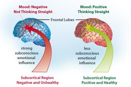 neuropsicologia2